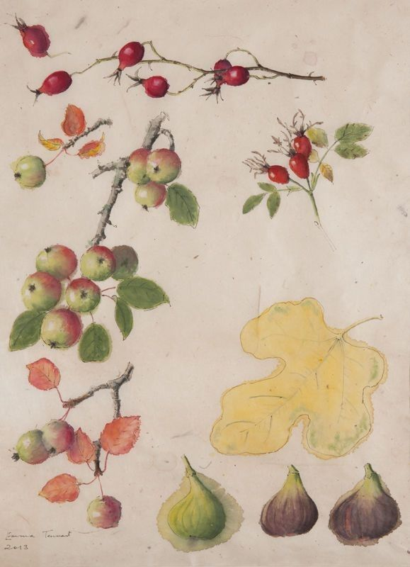 crab apples roses and figs - emma tennant.png