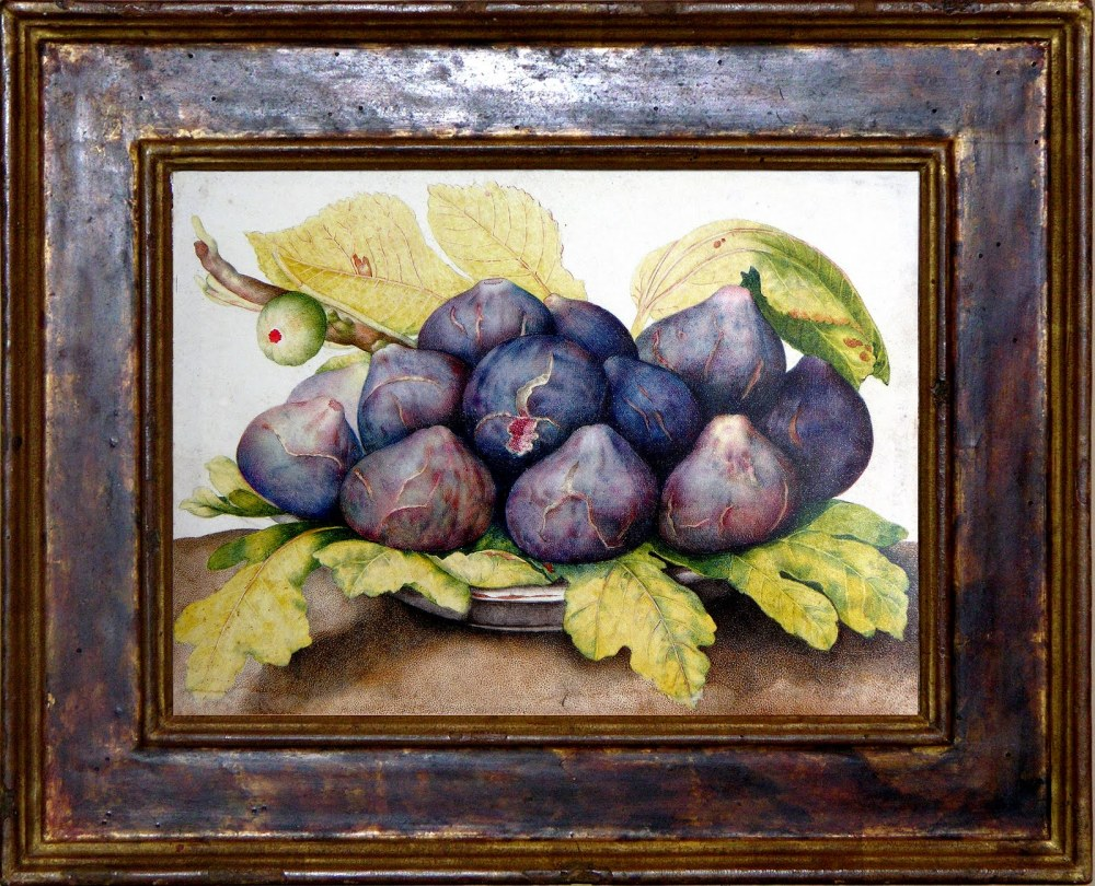 Garzoni - Figs-framed